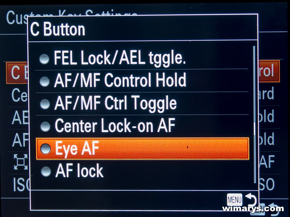 Sony A77 II advanced features guide